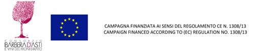 CAMPAGNA-FINANZIATA-AI-SENSI-DEL-REGOLAMENTO-CE-N-1